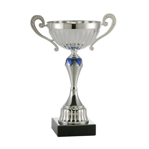Özel Kupa Gümüş 29